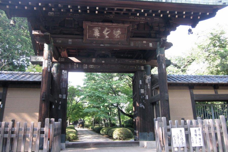 Готоку-дзи: Храм для любителей кошек