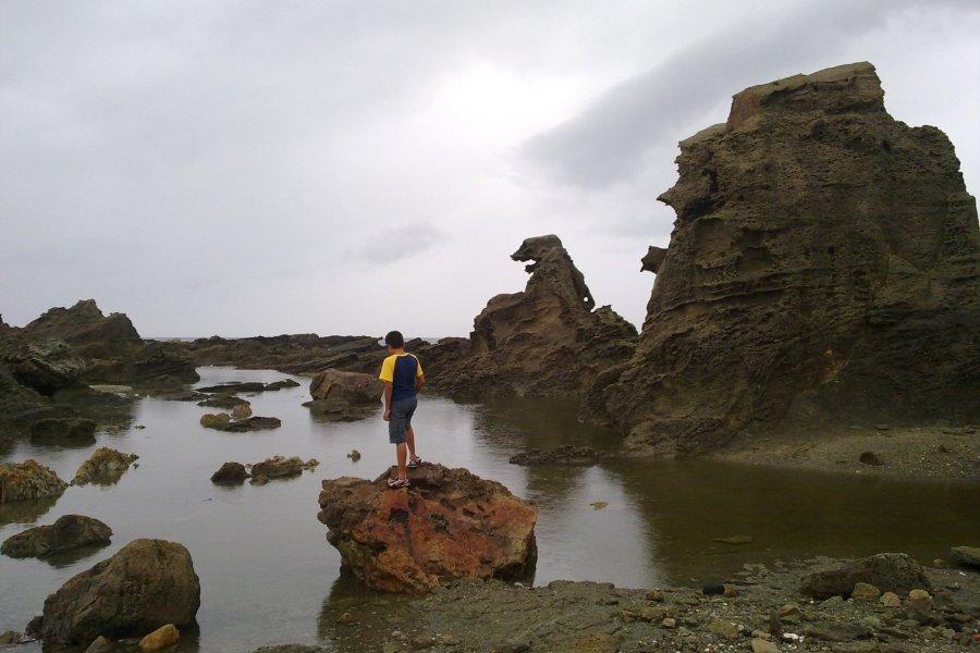 Годзилла и полуостров Ога