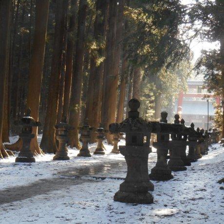 Храм Фудзи Сэнгэн
