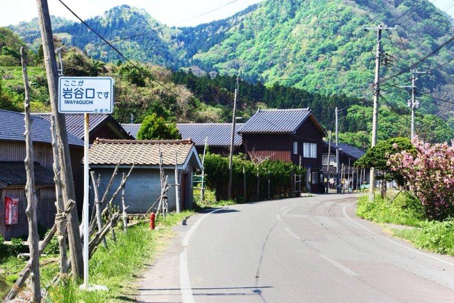Каучсерфинг в Японии