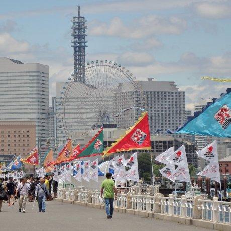 Гонки на драконьих лодках в Йокогаме