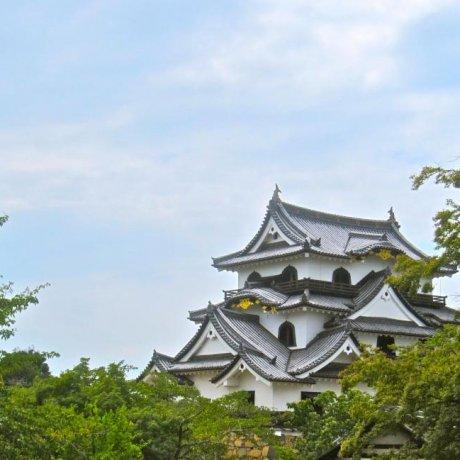 Замок Хиконэ