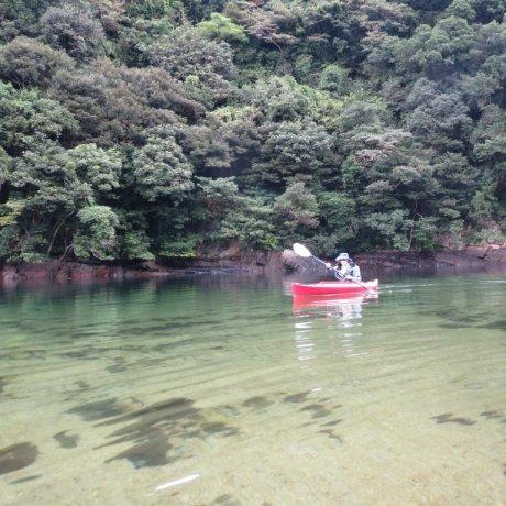 Каякинг по реке Амбо