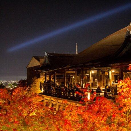 Осенняя иллюминация в Киёмидзу-дэра