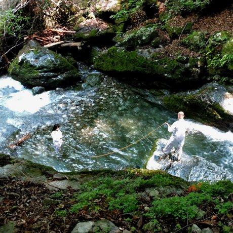 Водопад Фудо
