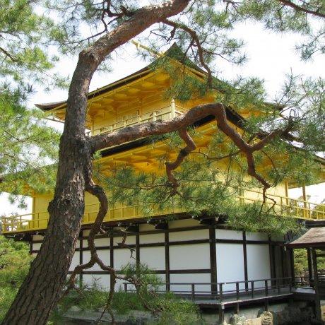 Атмосфера Киото
