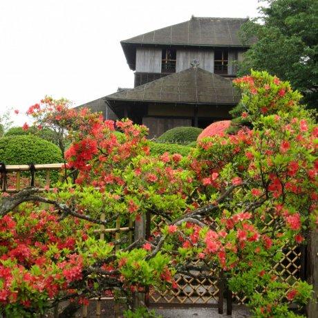 Дом Кобунтэй в саду Кайракуэн