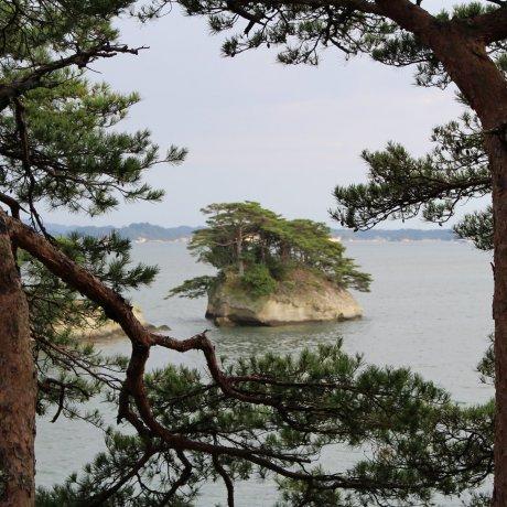 Виды острова Осима