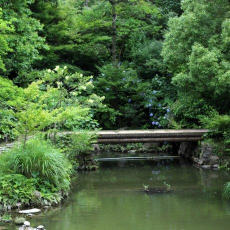 Японский сад замка Кокура