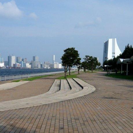 Олимпийская арена 2020: парк Сиокадзэ