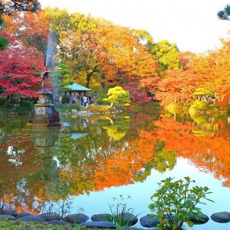 Парк Хибия